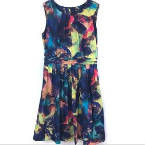 Ellen Tracy Fit and Flare Floral Dress Size Large